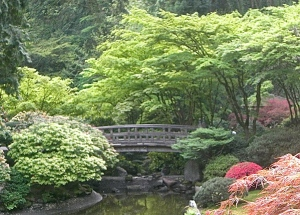 This is a beautiful, small bridge in the Japanese Garden n Oregon. I wasn't afraid, at all, to cross this one....©2015 PeaceFullHome.com