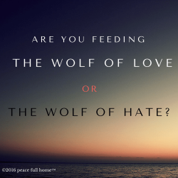 the wolf of love or the wolf of hate